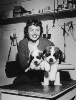 Donna Reed picture G832556