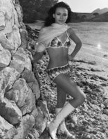 Lesley Anne Down picture G833575