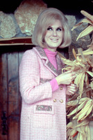 Dusty Springfield picture G838137