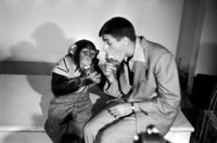 Jerry Lewis picture G838378
