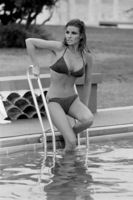 Raquel Welch picture G839586