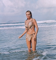 Raquel Welch picture G839590
