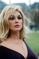 Sharon Tate picture G840264