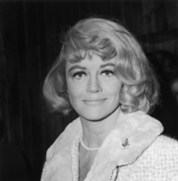 Dorothy Malone picture G842503