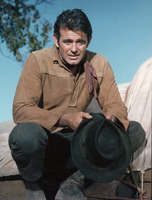 Stuart Whitman picture G846773