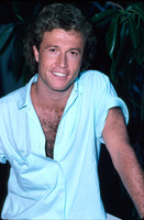 Andy Gibb picture G850183