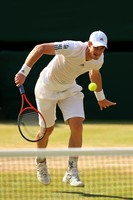 Andy Murray picture G855407
