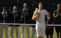 Andy Murray picture G855419