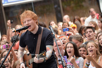 Ed Sheeran picture G332988