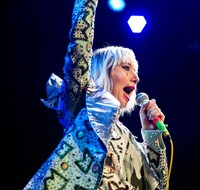 Yeah Yeah Yeahs picture G889647