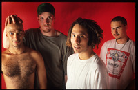 Rage Against The Machine picture G896199