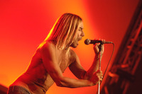 Iggy Pop picture G901314