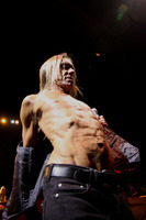 Iggy Pop picture G901317