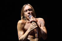 Iggy Pop picture G901319