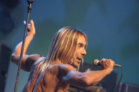 Iggy Pop picture G901321