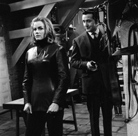 Honor Blackman picture G910714