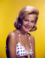 Sandra Dee picture G913905