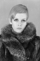 Twiggy picture G915850