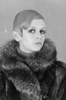 Twiggy picture G915860