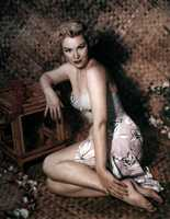 Virginia Mayo picture G917252