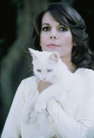 Natalie Wood picture G919154