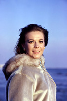 Natalie Wood picture G919193