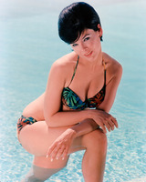 Yvonne Craig picture G920352