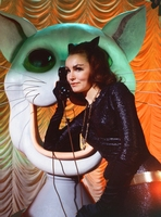 Julie Newmar picture G920685