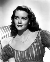 Dorothy Malone picture G924281