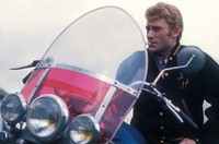 Johnny Hallyday picture G926519