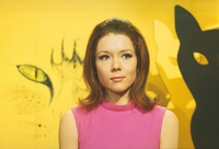 Diana Rigg picture G927057
