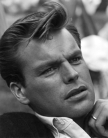 Robert Wagner picture G934979
