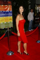 Lauren Sanchez picture G94845
