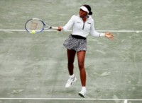 Venus Williams picture G96456