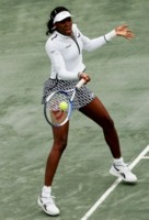 Venus Williams picture G96457
