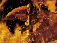 Vagrant story picture GW10611
