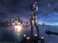 Ghost in the shell stand alone complex picture GW11093