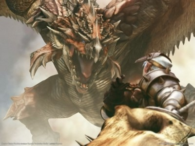 Monster hunter freedom poster GW11299