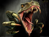 Turok evolution picture GW11806