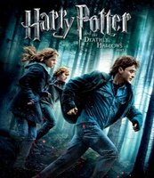 Harry Potter and the Deathly Hallows: Part I movie poster (2010) picture MOV_0084ba4e