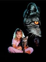 Cat's Eye movie poster (1985) picture MOV_00ac63e6
