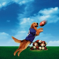 Air Bud: Golden Receiver movie poster (1998) picture MOV_1b30a604