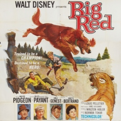 Big Red movie poster (1962) poster MOV_036066c9