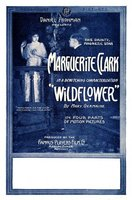 Wildflower movie poster (1914) picture MOV_03f31f69