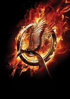 Catching Fire movie poster (2013) picture MOV_04357d3d