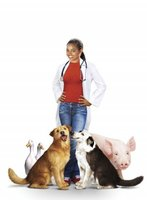 Dr Dolittle 3 movie poster (2006) picture MOV_5f5f6e77