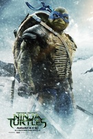 Teenage Mutant Ninja Turtles movie poster (2014) picture MOV_05e66b36