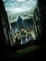 The Maze Runner movie poster (2014) picture MOV_0a767e57