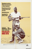 Charley-One-Eye movie poster (1973) picture MOV_0b036d11