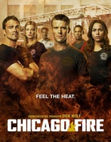 Chicago Fire movie poster (2012) picture MOV_0b7062de